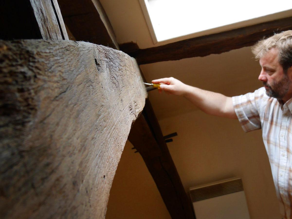 diagnostic termites adicea diagnostic immobilier. Black Bedroom Furniture Sets. Home Design Ideas